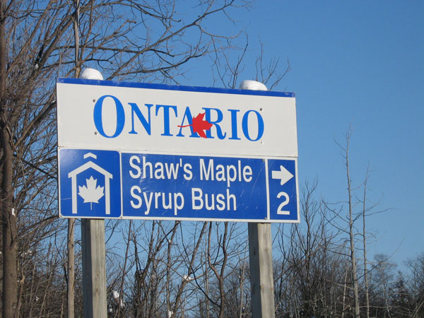 shaws maple syrup bush sign