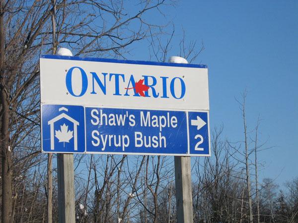 shaws maple syrup bush sign